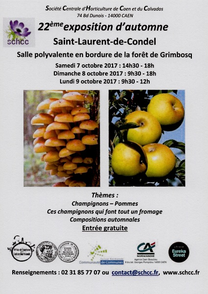 Flyer expo d automne